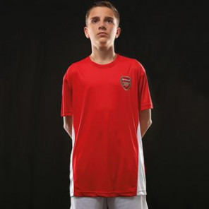 Official Football Merch Junior Arsenal FC t-shirt