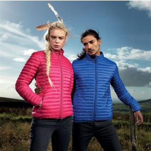 2786 Women's tribe fineline padded jacket